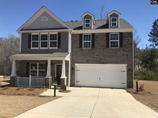 219 Woolbright Lane #1089, Chapin, SC 29036 (MLS #420212) :: Home Advantage Realty, LLC