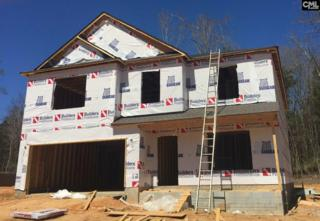 138 Sunsation Drive, Chapin, SC 29036 (MLS #420283) :: Home Advantage Realty, LLC
