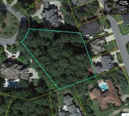 80 Avian Trail, Columbia, SC 29206 (MLS #420301) :: Home Advantage Realty, LLC