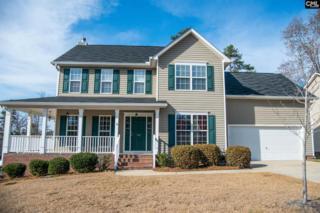 132 Stonemont Drive, Irmo, SC 29063 (MLS #420356) :: Home Advantage Realty, LLC
