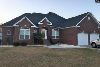 5788 Bamberg Road, Cope, SC 29038 (MLS #420364) :: Home Advantage Realty, LLC