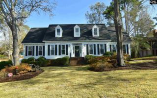 208 Weeping Cherry Lane, Columbia, SC 29212 (MLS #420424) :: Home Advantage Realty, LLC