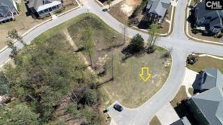 157 Cherokee Shores Drive, Lexington, SC 29072 (MLS #420428) :: Home Advantage Realty, LLC