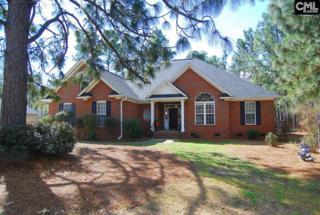 17 Blackhawk Court, Blythewood, SC 29016 (MLS #420434) :: Exit Real Estate Consultants