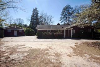 204 Chippewa Drive, Columbia, SC 29210 (MLS #420470) :: Home Advantage Realty, LLC