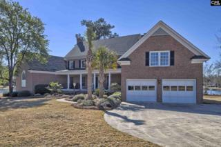 126 Blackburn Road W, Irmo, SC 29063 (MLS #420590) :: Exit Real Estate Consultants