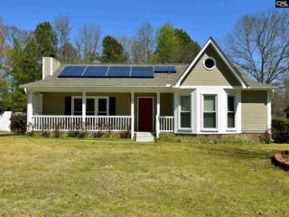 4 Winslow Court, Columbia, SC 29229 (MLS #420621) :: Exit Real Estate Consultants