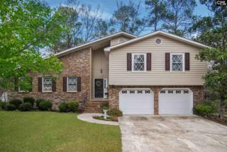 318 Saint Albans Road, Irmo, SC 29063 (MLS #420802) :: Exit Real Estate Consultants