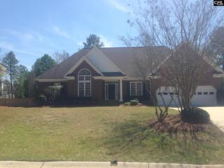 123 Osborne Lane, Irmo, SC 29063 (MLS #420913) :: Exit Real Estate Consultants