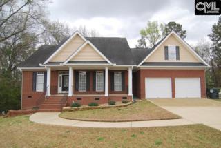 305 Vista Springs Circle, Lexington, SC 29072 (MLS #420928) :: Exit Real Estate Consultants