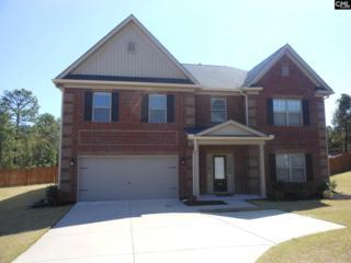441 Sag Harbor Circle E, Lexington, SC 29072 (MLS #420976) :: Exit Real Estate Consultants