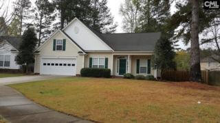 104 Crimson Court, Lexington, SC 29072 (MLS #420983) :: Exit Real Estate Consultants