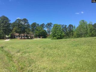 1500 Fork Avenue, Irmo, SC 29063 (MLS #421600) :: Home Advantage Realty, LLC