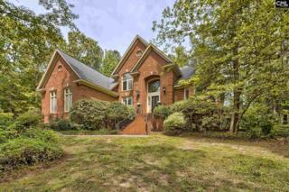 209 Shorewood Court, Columbia, SC 29212 (MLS #422038) :: Home Advantage Realty, LLC