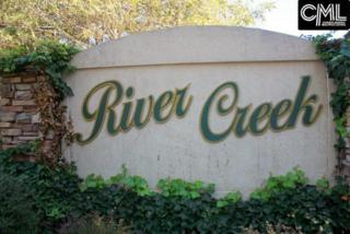 222 River Creek Drive 25A & 25B, Irmo, SC 29063 (MLS #422109) :: Home Advantage Realty, LLC