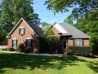 523 Jake Meetze Road, Chapin, SC 29036 (MLS #422195) :: Home Advantage Realty, LLC