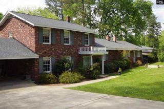 1036 Trillie Lane, Chapin, SC 29036 (MLS #422314) :: Home Advantage Realty, LLC