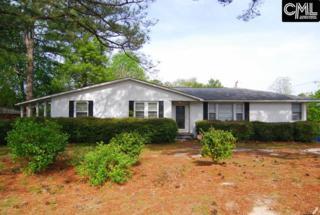3023 Pine Belt Road, Columbia, SC 29204 (MLS #422445) :: Home Advantage Realty, LLC