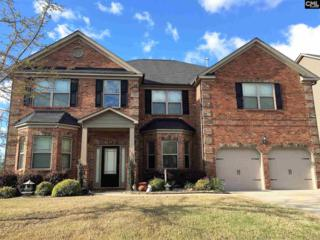 159 Rose Oak Drive, Irmo, SC 29063 (MLS #422451) :: Home Advantage Realty, LLC