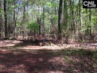 245 Red Knoll Road, Chapin, SC 29036 (MLS #422524) :: Home Advantage Realty, LLC