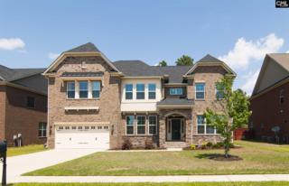 913 Plyler Lane, Columbia, SC 29229 (MLS #422535) :: Home Advantage Realty, LLC