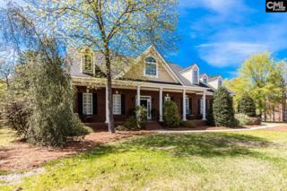 35 Ravenglass Way, Blythewood, SC 29016 (MLS #422568) :: Home Advantage Realty, LLC