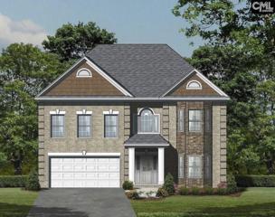 134 White Water Drive, Chapin, SC 29036 (MLS #422600) :: Home Advantage Realty, LLC