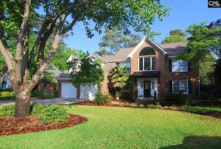 219 Lake Vista Drive, Chapin, SC 29036 (MLS #422610) :: Home Advantage Realty, LLC