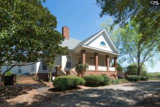 440 Persimmon Fork Road, Blythewood, SC 29016 (MLS #422630) :: Home Advantage Realty, LLC