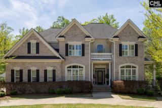 112 Holly Leaf Lane, Lexington, SC 29072 (MLS #422671) :: Home Advantage Realty, LLC