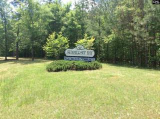 477 Summerset Bay Lot 32, Chappells, SC 29037 (MLS #422738) :: Home Advantage Realty, LLC