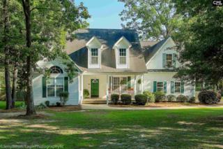 421 Whits End, Chapin, SC 29036 (MLS #422739) :: Exit Real Estate Consultants