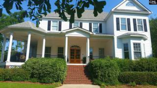 113 Power Point Lane, Lexington, SC 29072 (MLS #422762) :: Home Advantage Realty, LLC