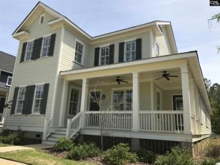 162 Glade Spring Drive, Lexington, SC 29072 (MLS #422768) :: Home Advantage Realty, LLC