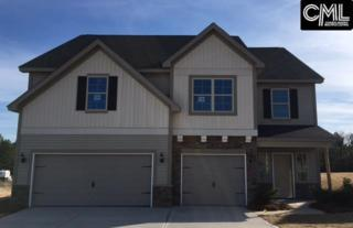 410 Winterfield Drive #52, Lexington, SC 29073 (MLS #422770) :: Home Advantage Realty, LLC