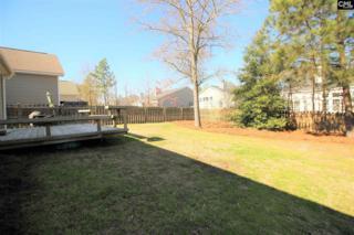 303 Starling View Ct, Lexington, SC 29073 (MLS #422776) :: Home Advantage Realty, LLC