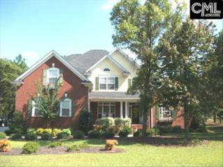 114 Brookhaven Circle, Blythewood, SC 29016 (MLS #422948) :: Exit Real Estate Consultants