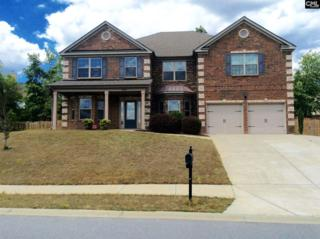 244 Lake Frances Drive, West Columbia, SC 29170 (MLS #422970) :: Exit Real Estate Consultants