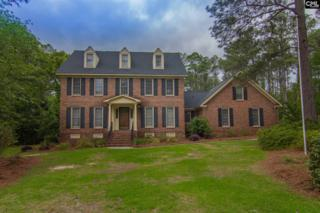 10 N Hill Court, Columbia, SC 29223 (MLS #422980) :: Exit Real Estate Consultants