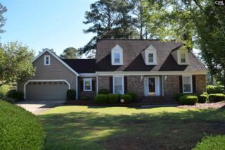 300 Viking Drive, Columbia, SC 29229 (MLS #422988) :: Exit Real Estate Consultants
