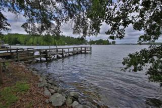 1771 ISLE Of Pines Drive, Chapin, SC 29036 (MLS #423000) :: Exit Real Estate Consultants