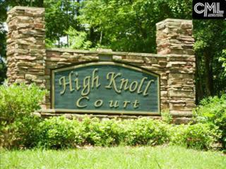 113 High Knoll Court #4, Gilbert, SC 29054 (MLS #424441) :: Exit Real Estate Consultants