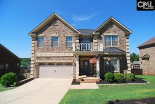 548 Everton Drive, Chapin, SC 29036 (MLS #424800) :: Home Advantage Realty, LLC