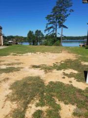 331 Osprey Lake Drive #17, Chapin, SC 29036 (MLS #424802) :: Home Advantage Realty, LLC
