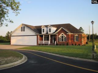231 Cirrus Lane, Gilbert, SC 29054 (MLS #424808) :: Exit Real Estate Consultants
