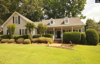 116 Three Oak Lane, Chapin, SC 29036 (MLS #424913) :: Exit Real Estate Consultants