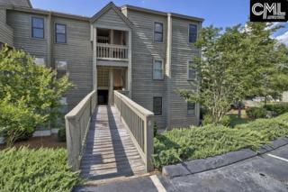 1441 Old Chapin Road Unit 633, Lexington, SC 29072 (MLS #424964) :: Exit Real Estate Consultants