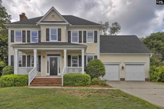 9 Holly Hedge Court, Blythewood, SC 29016 (MLS #424969) :: Exit Real Estate Consultants