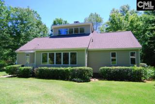 103 Purgatory Point, Chapin, SC 29036 (MLS #424970) :: Home Advantage Realty, LLC