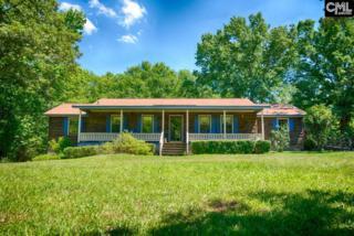 1116 Sam Bradshaw Road, Irmo, SC 29063 (MLS #424981) :: Home Advantage Realty, LLC